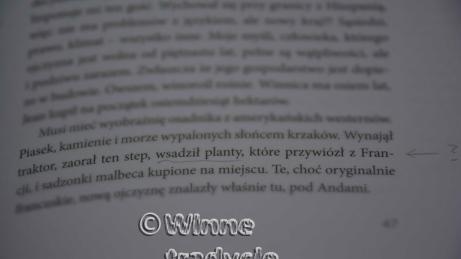 """Nieszczęsne """"wsadzanie plantów"""". I to w Krakowie!"""